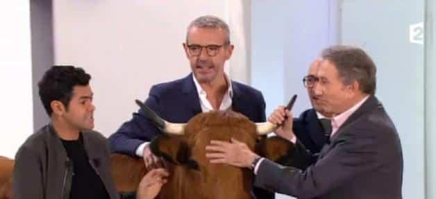Jamel Debbouze arrive chez Drucker avec une vache