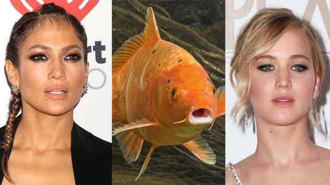 Fish-Gape