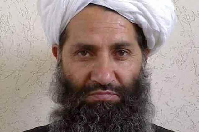 chef-talibans