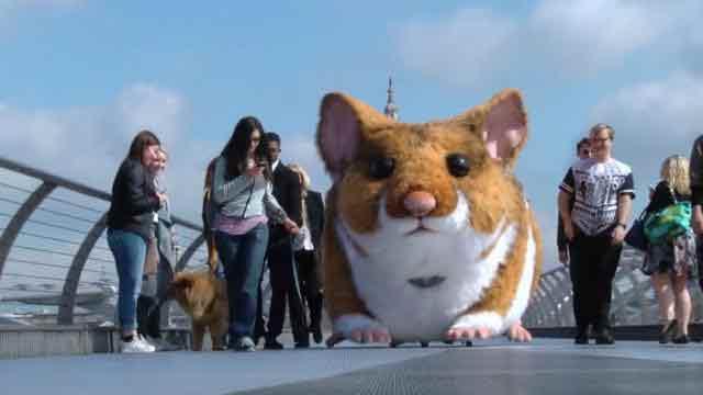 hamster-londres