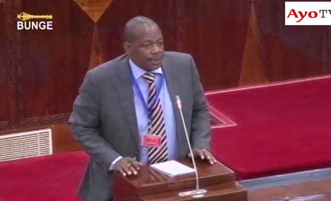 ministre-tanzanien