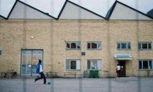 centre-suede