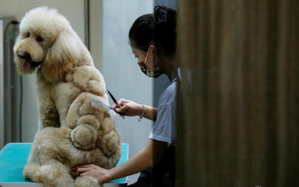 chien taiwan 3