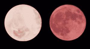 lune jambon