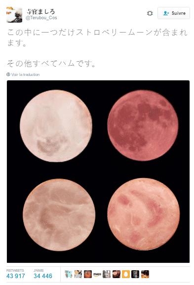 tweet lune