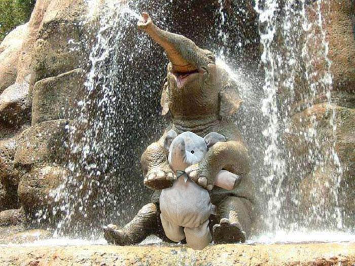 elephant peluche 6