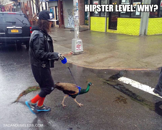 les hipsters 13