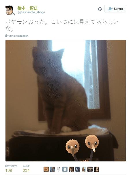 pokemon animaux 4