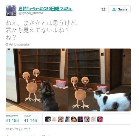 pokemon animaux 5
