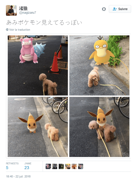 pokemon animaux 8