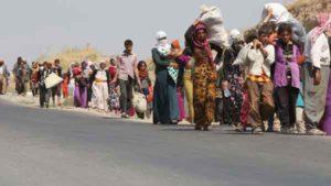 yazidis-1