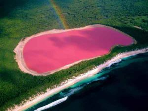 Pink-Lagoon-in-Mexico