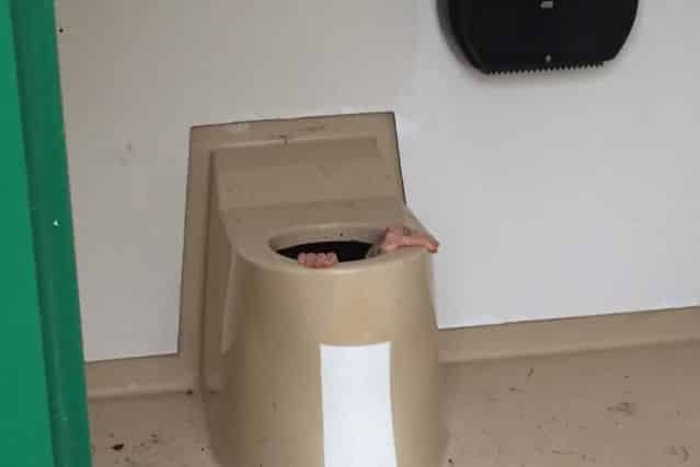 toilettes norvege
