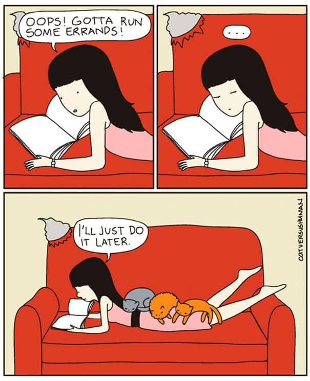 vie avec chat 8