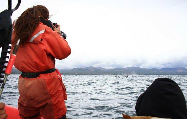 Russian Orcas, via Facebook