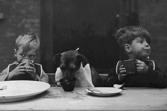 photos-noir-et-blanc-11
