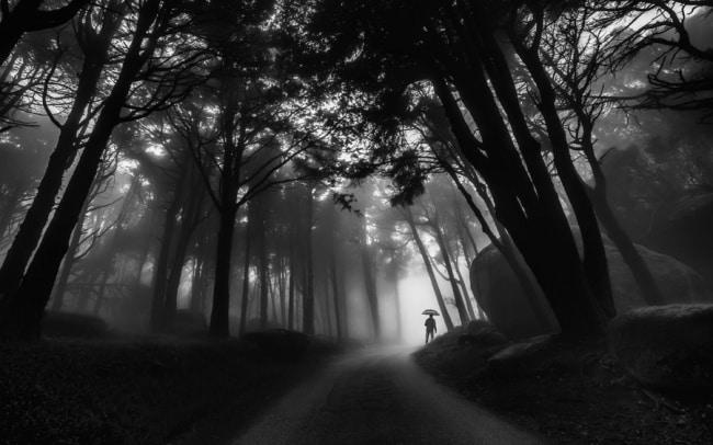photos-noir-et-blanc-17