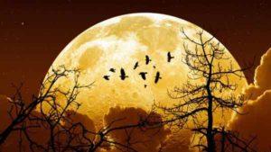 super-extra-lune