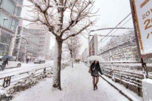 tokyo-neige